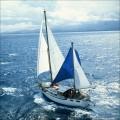 jimmy-boats-aventura1