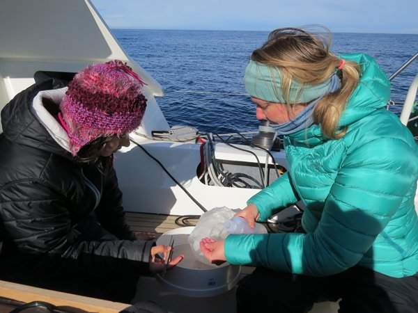 Nera and Emily examine what the trawl has picked up