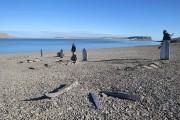 m_Graves-on-Beechy-Island