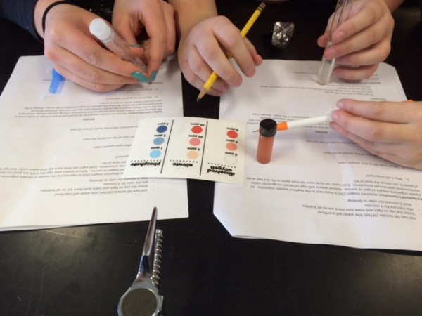 9th grade biology students from North Penn LIberty school doing the water quality testing on their local samples of water