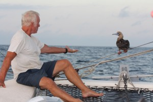 Tim tries to invite the booby to dinner (photo Zeke Holland)