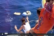 video-1st-drifters-bpo-thb